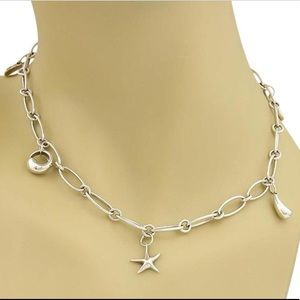 Tiffany & Co. Jewelry - T&Co Elsa Peretti Large Oval Link Charm Necklace